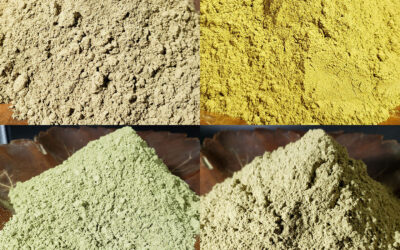Christopher's Organic Phenotalk – Learn More About the Differences with Kratom Phenotypes
